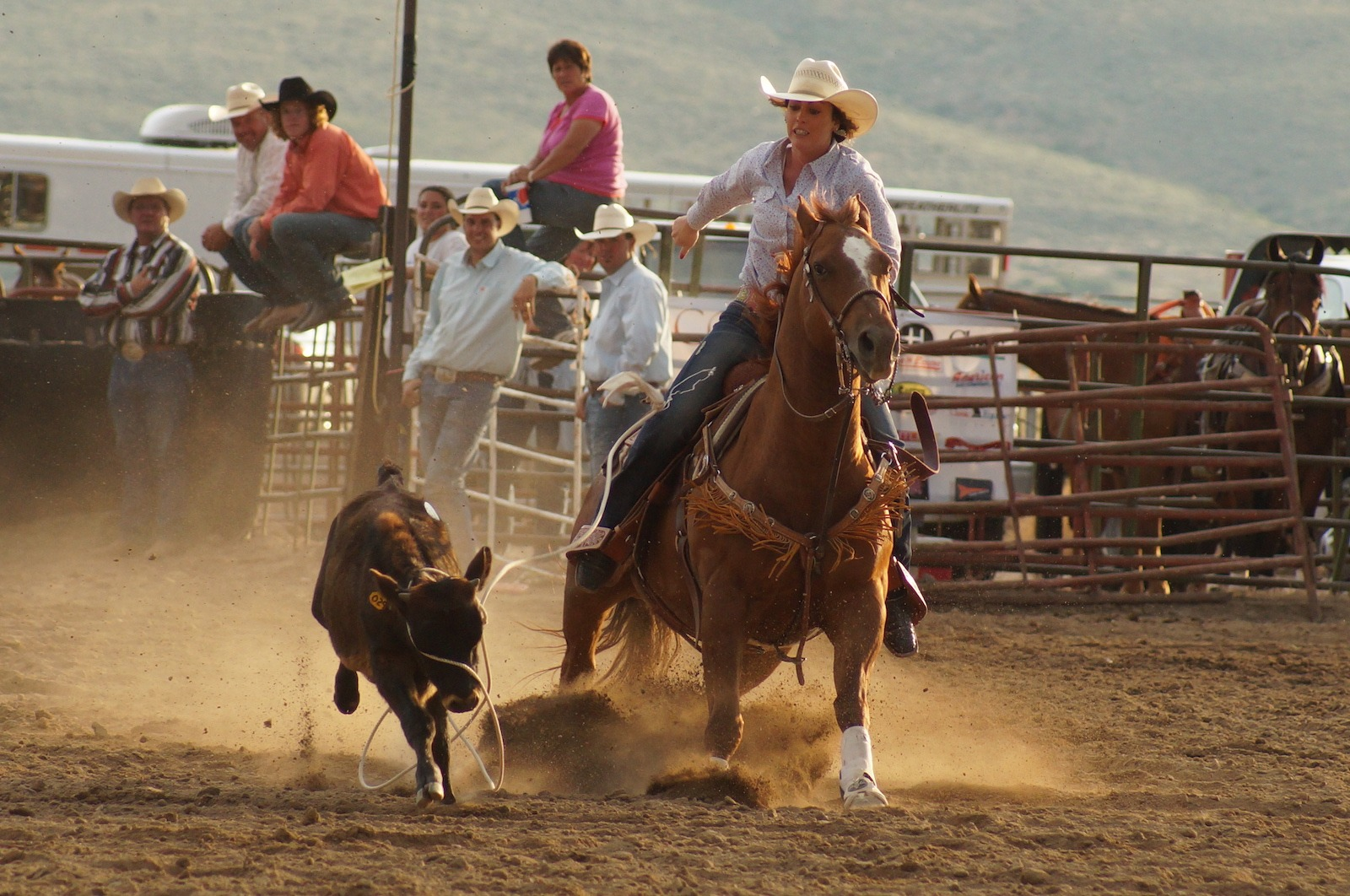 Lander Wyoming rodeo photography